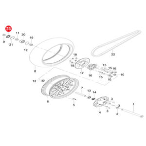 Lip Seal Ring Assy Price Specification